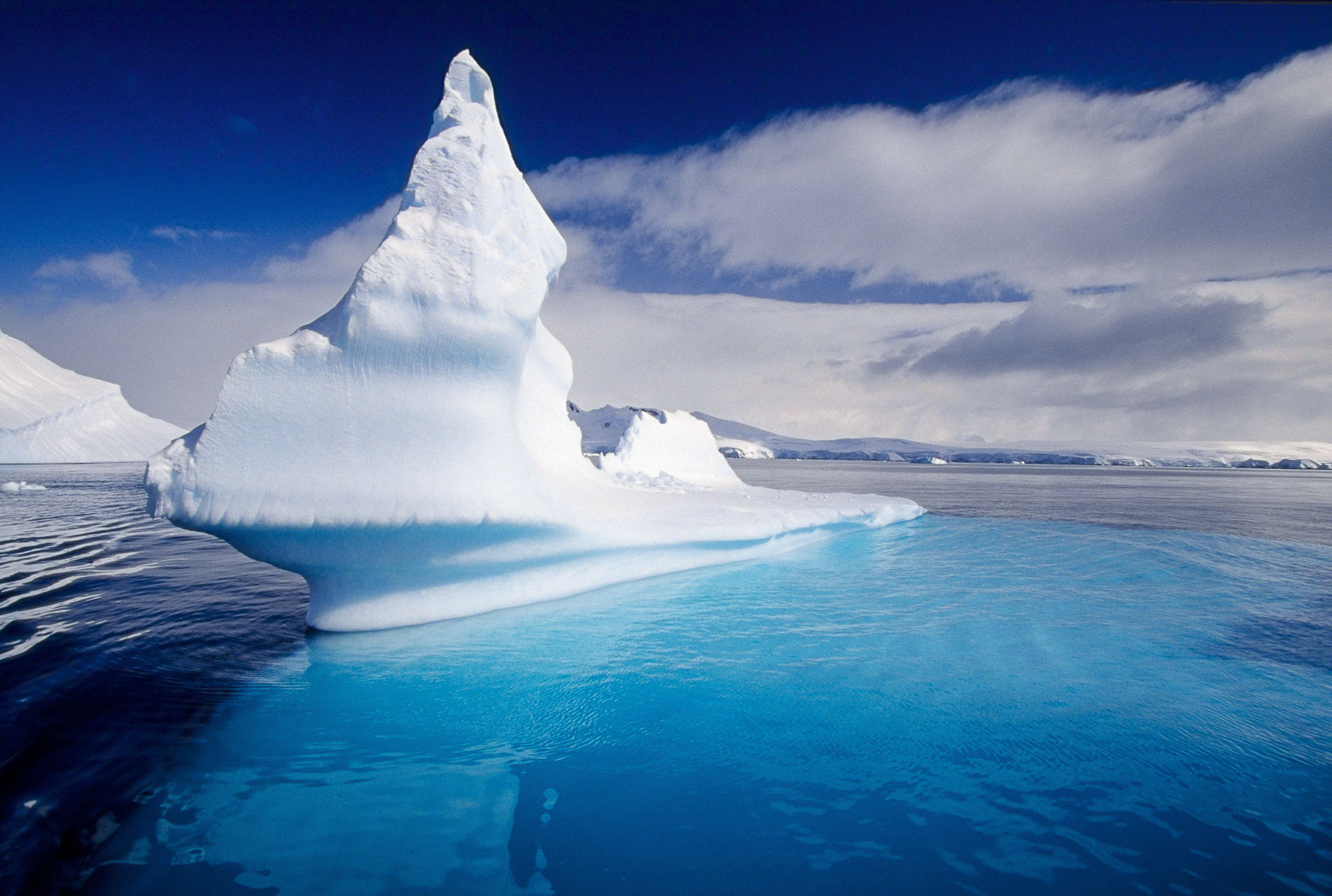 Beautiful floating icebergs